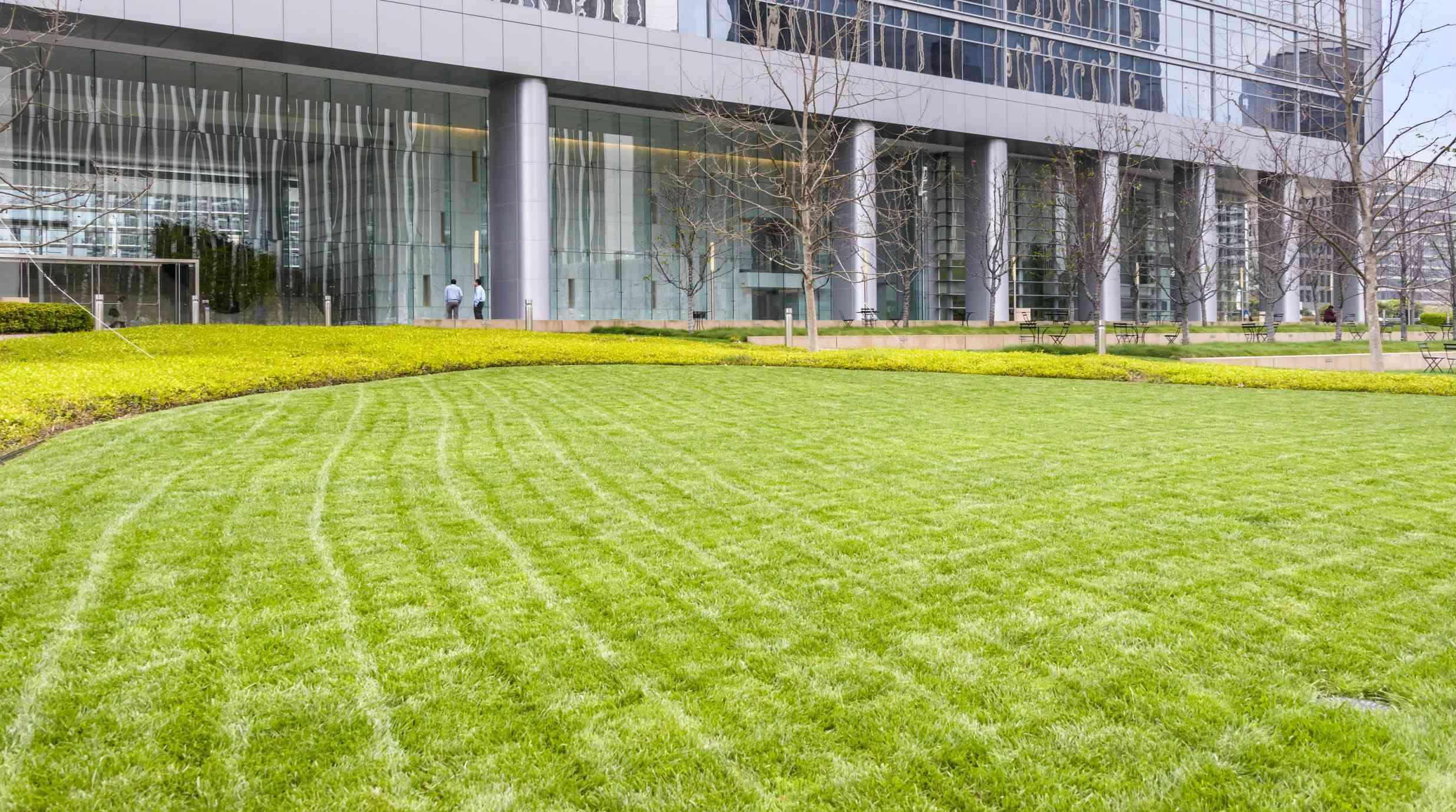 Landscaping Company Eden Prairie | Schneider\'s Lawn N\' Landscape